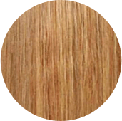 #27 honey blonde hair